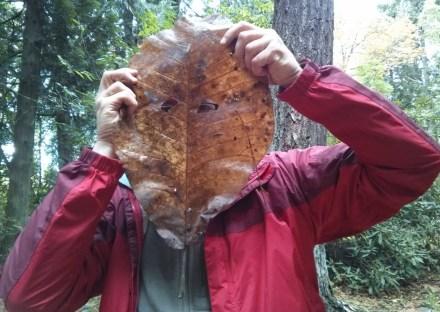 leafmask