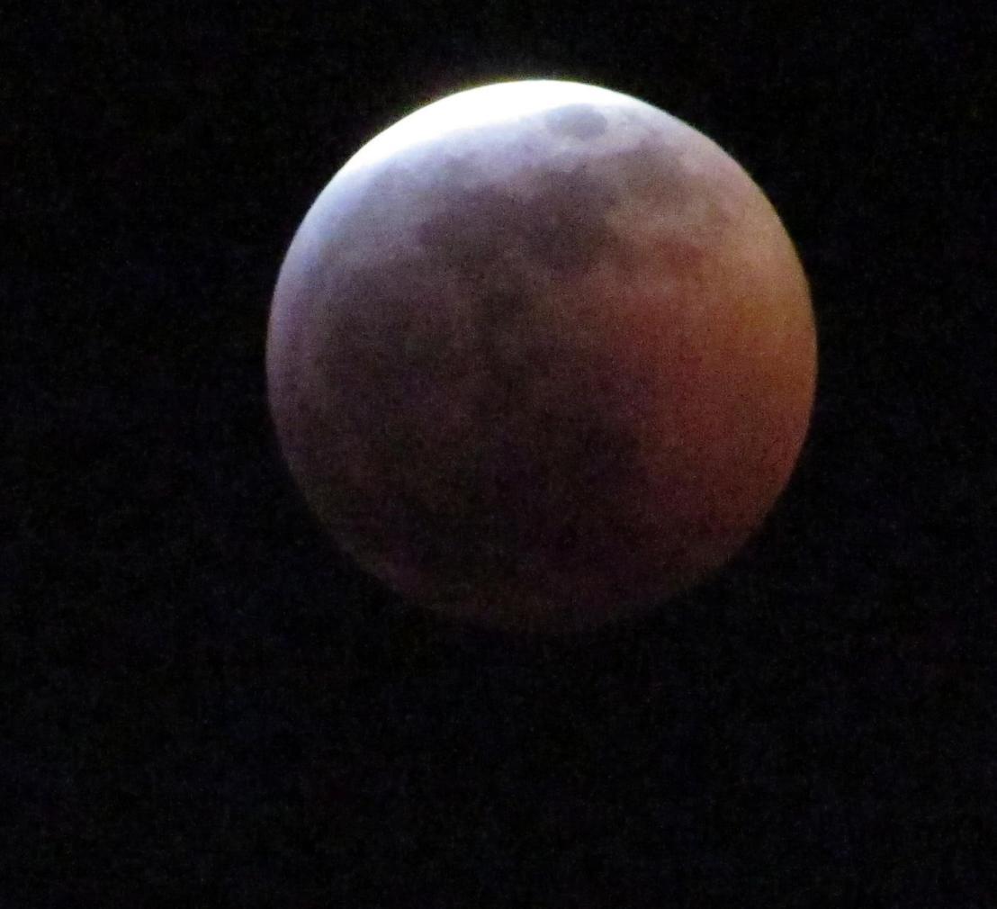 eclipse, lunar, january 2019